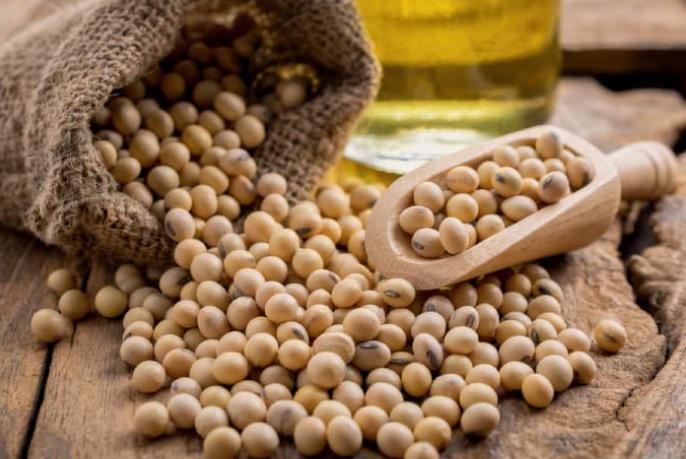 Đậu nành được đánh giá là loại thực phẩm lành mạnh và đem lại nhiều công dụng hữu ích